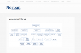Profile Page Design - Professional Web Design and Development Project by Revelation BD for NORBAN Group
