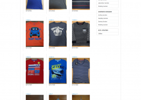 Product Gallery - Company Page - Professional Web Design and Development Project by Revelation BD for DIRD Group